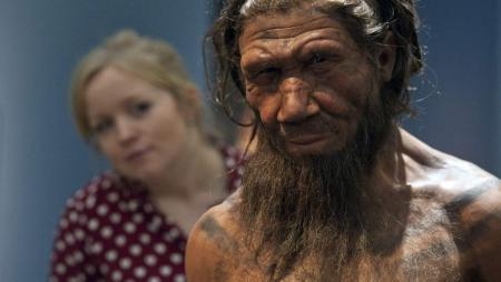 На сколько процентов человек отличается от неандертальцев