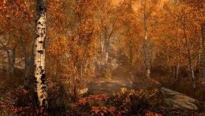 Разработчик подтвердил: лисицы со Skyrim действительно могут приводить игроков к сокровищам